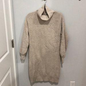 Small Tall Turtleneck Sweater Dress